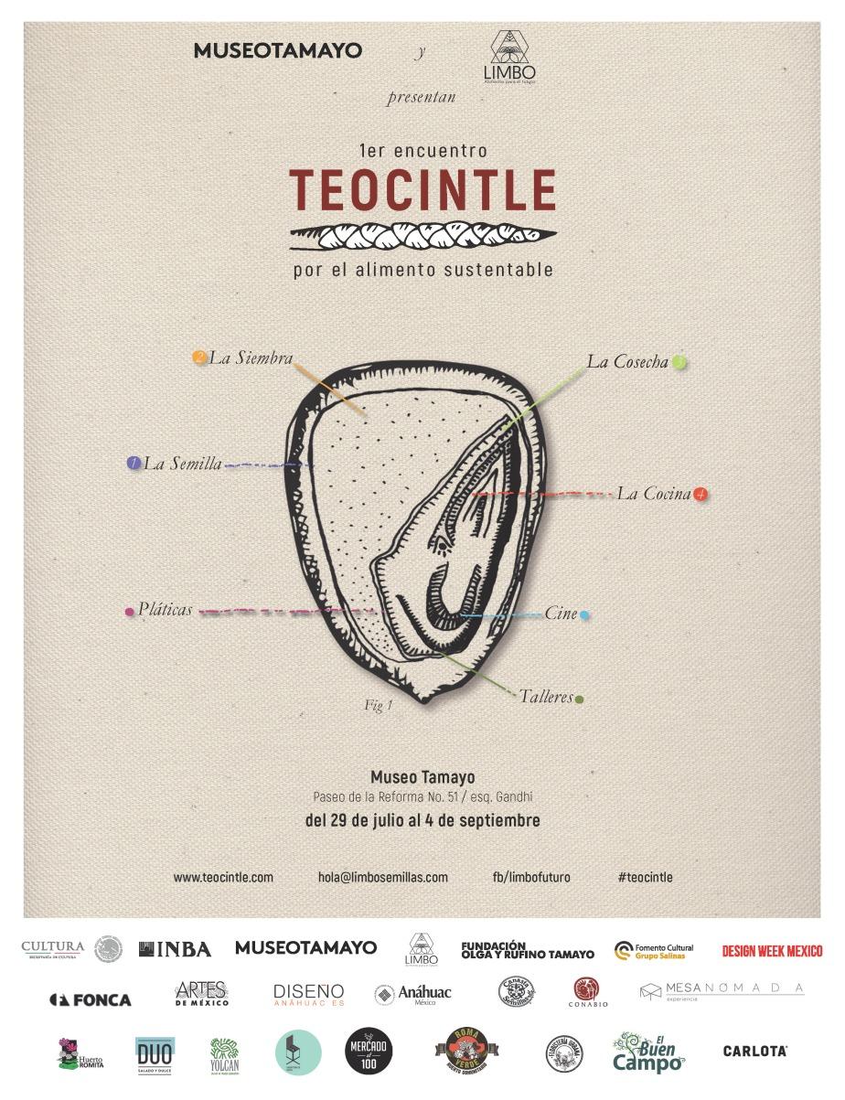 Teocintle_teaser